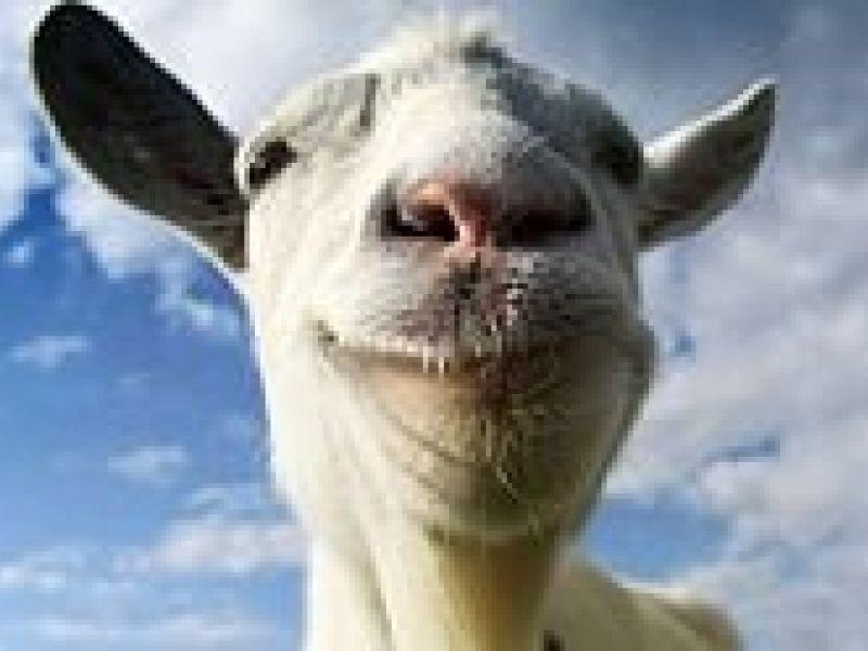Seja uma cabra... Ou não