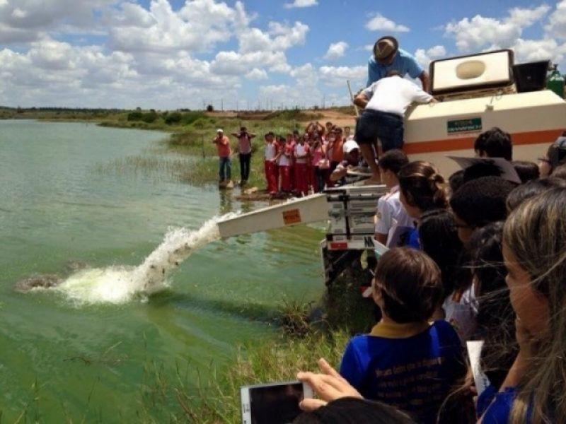 Peixamento com surubim e pirá marca Semana do Meio Ambiente em Penedo