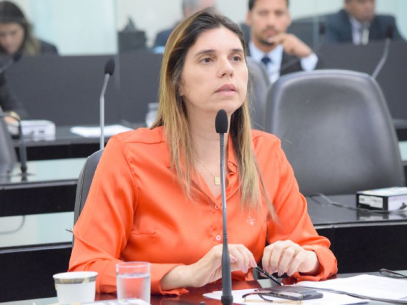Assembeia Legislativa de Alagoas cria a Semana Estadual do Artesanato