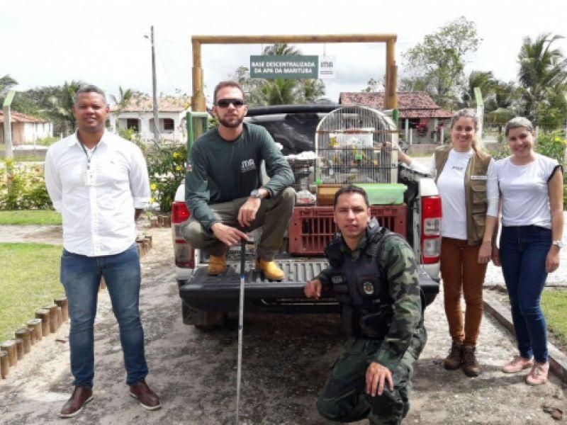 IMA e BPA fazem soltura de animais silvestres na APA da Marituba em Penedo