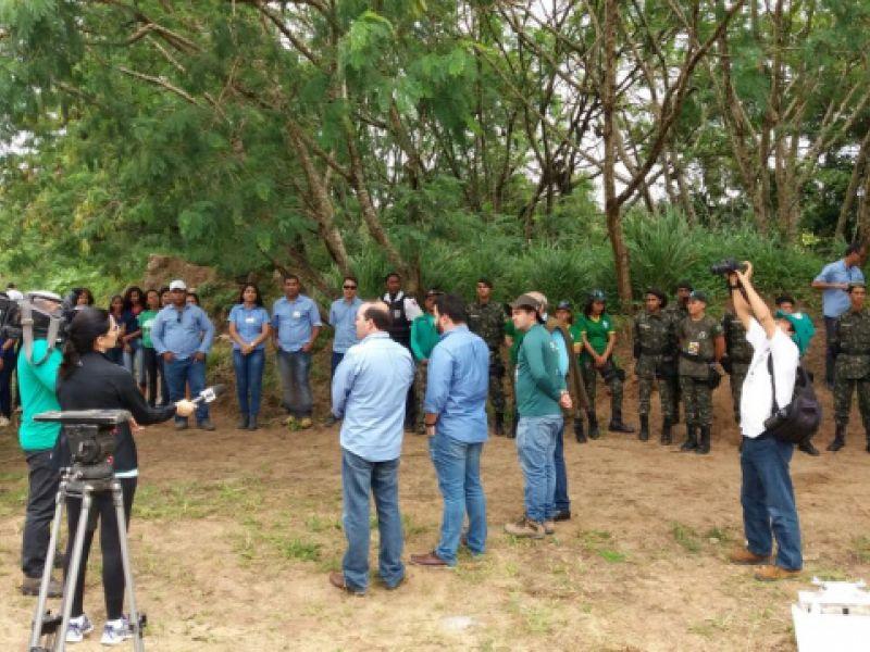 Mais mil mudas de espécies nativas são plantadas em Coruripe