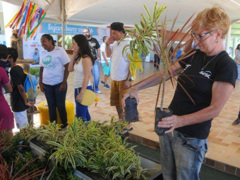 Planta Maceió faz doação de 3 mil mudas na Bienal do Livro