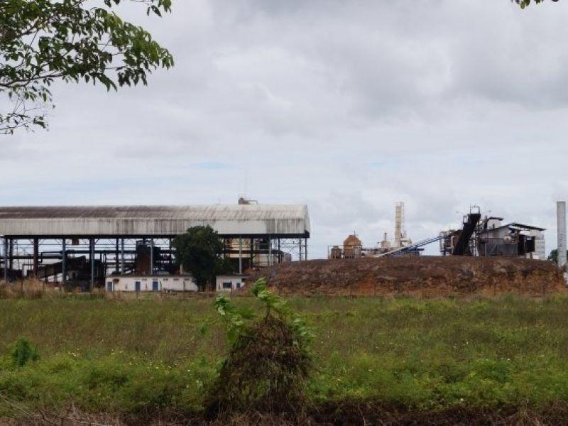 Para evitar falência, Paisa e mais seis usinas de Alagoas entram com pedido de recuperação judicial