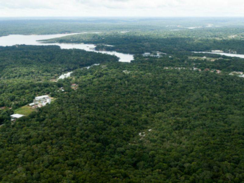 Projetos de recuperação da Amazônia receberão investimento de R$ 200 milhões
