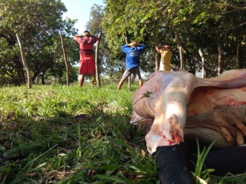 Operação coíbe abate clandestino de gado na zona rural de Penedo