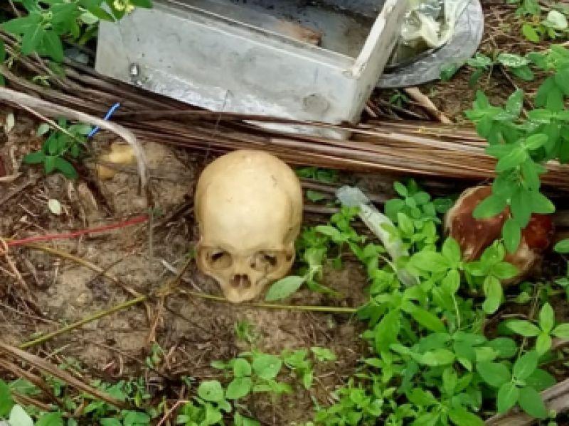 Crânio humano que pode ser de Roberta Dias é encontrado em terreno do Pontal do Peba