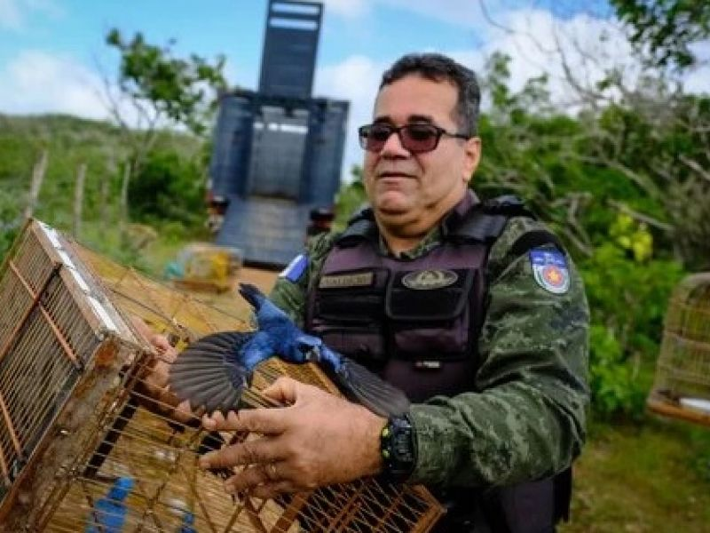FPI do São Francisco devolve à natureza pássaros e jabutis que estavam em cativeiros