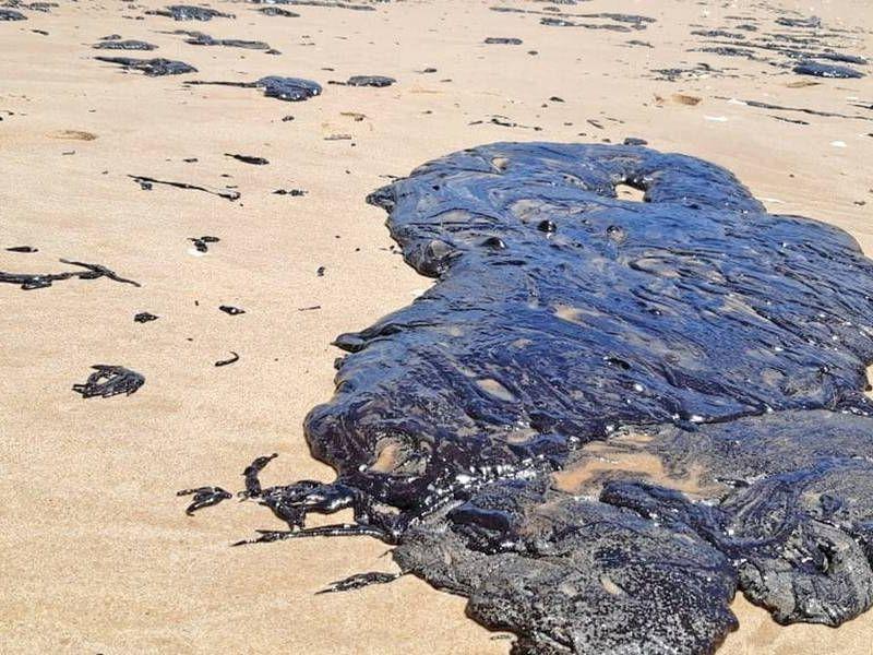 Barreiras serão instaladas na foz do Rio São Francisco para conter avanço de óleo