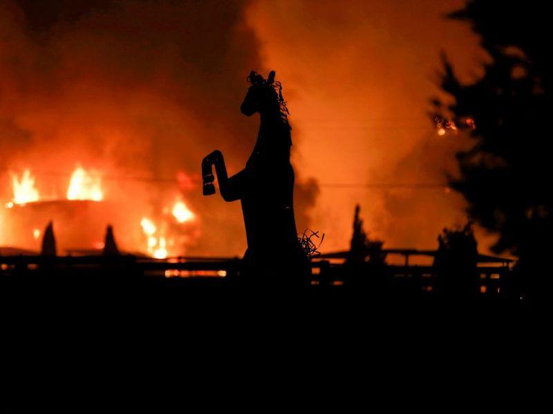 """Clima: 11 mil cientistas alertam para """"sofrimento incalculável"""""""
