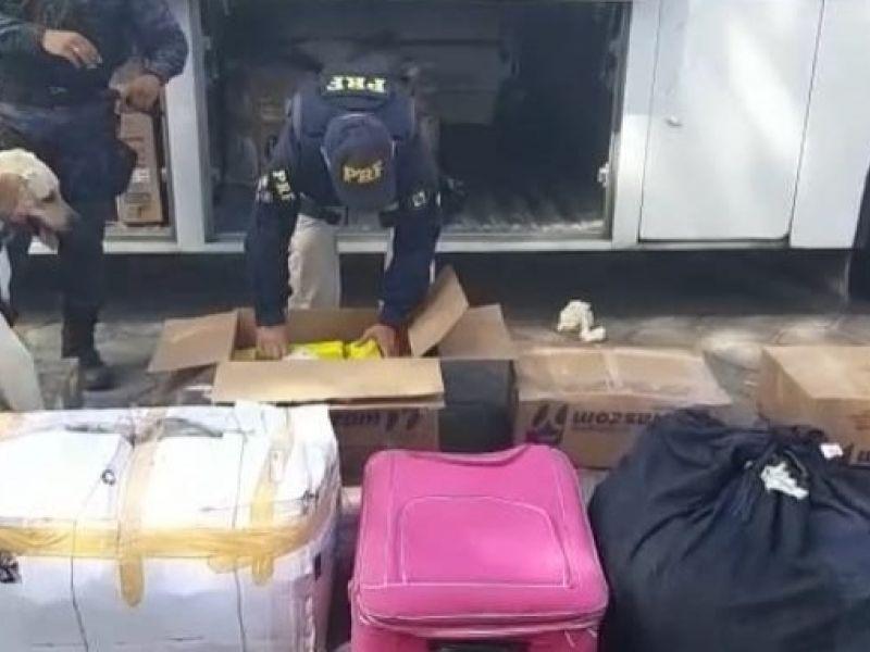 Mulher é encaminhada à delegacia de Penedo após ser flagrada com 200 kg de maconha em ônibus