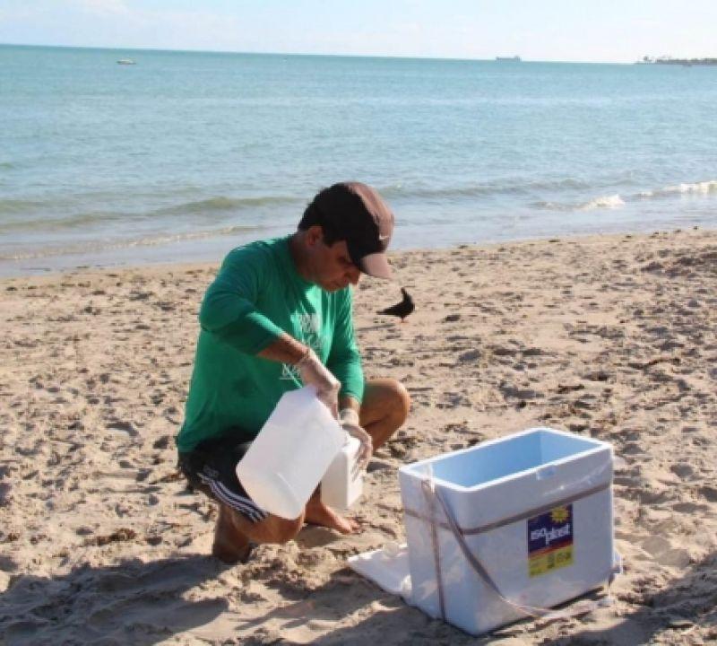 IMA e Ufal coletam amostras de solo e água na costa alagoana para avaliar a qualidade das praias e do pescado