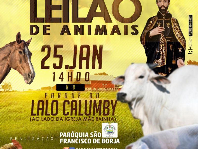 Paróquia realiza leilão de animais em prol da reforma da igreja matriz de Piaçabuçu